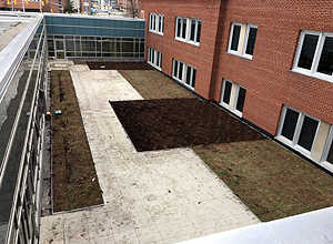 Green Roof C/With Off-White hydroPAVERS®