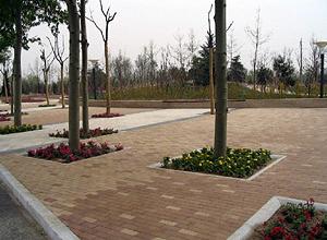 Roadside Wide Sidewalk Joing Park Area