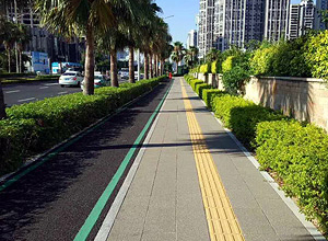 Walkway And Bicycle Path