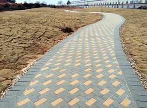 Dark Grey And Sand Walkway