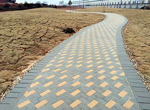Dark Grey And Sand Walkway