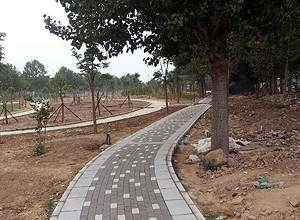 Simple Dark Grey And Off-White Pathway